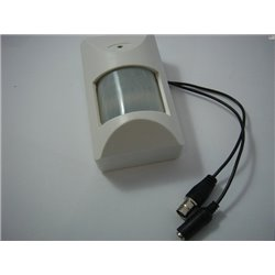 Skytronic Z/W bewakingscamera in bewegingsensor-behuizing